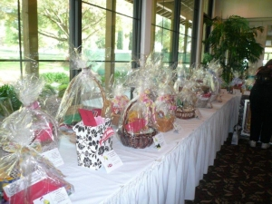 Raffle and Silent Auction Items